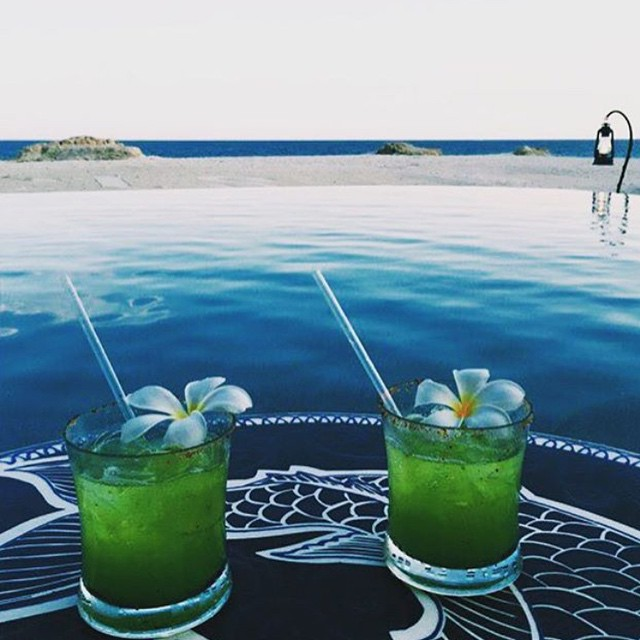 Green with envy 🌴🍹 #Repost via @lasventanasalparaiso #LisaLozano #BeachLife