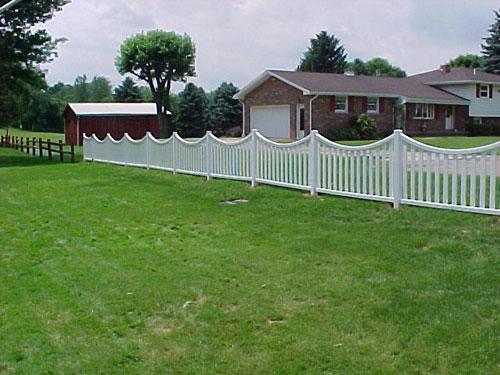 fence-7.jpg
