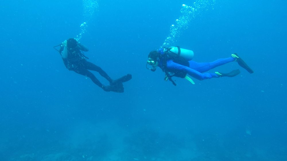 That's me in the blue scuba diving in the great barrier reef!