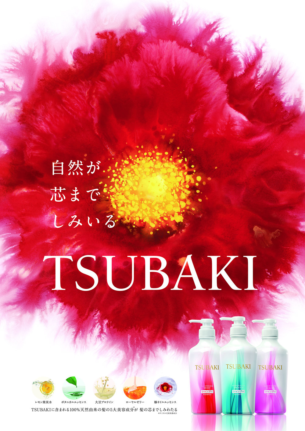 TBK_B1_2_180308.jpg