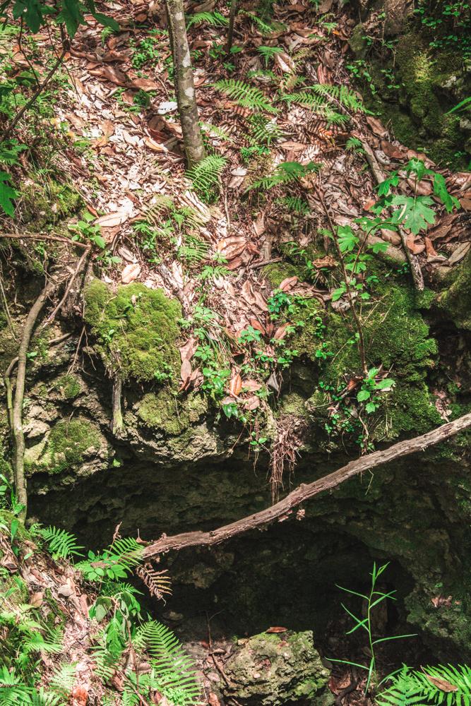 Falling Waters Park-64.jpg