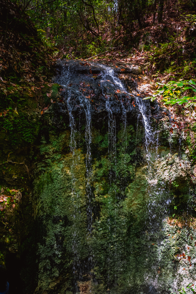 Falling Waters Park-66.jpg