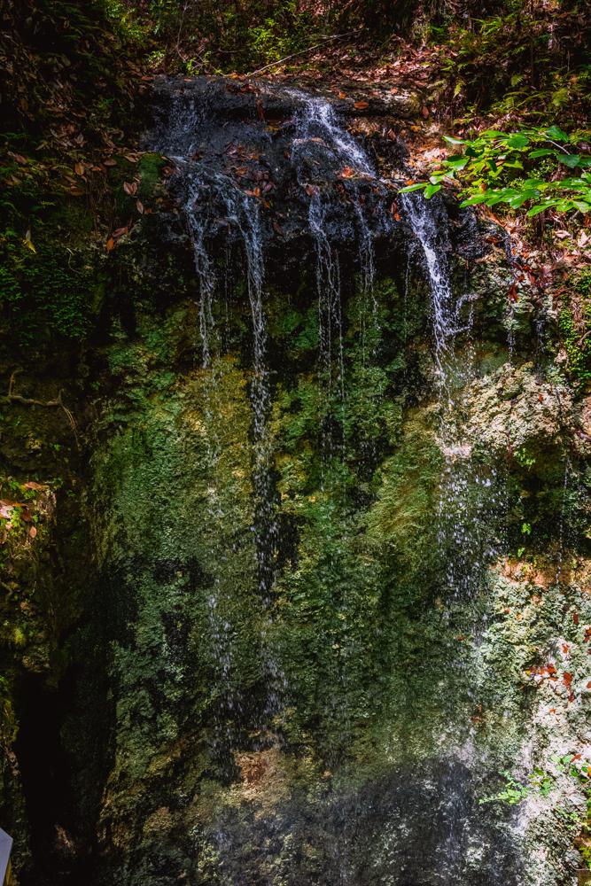 Falling Waters Park-69.jpg