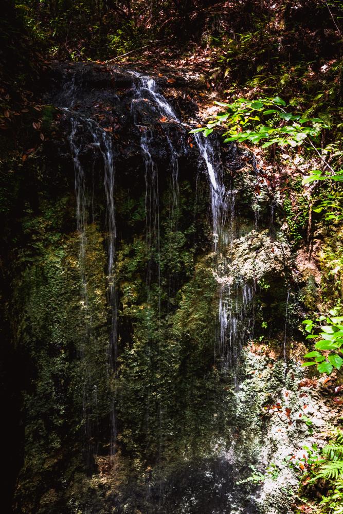 Falling Waters Park-71.jpg