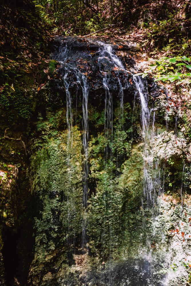 Falling Waters Park-72.jpg