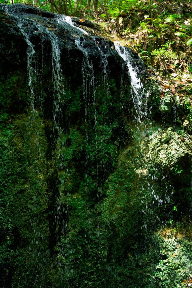 Falling Waters Park-75.jpg