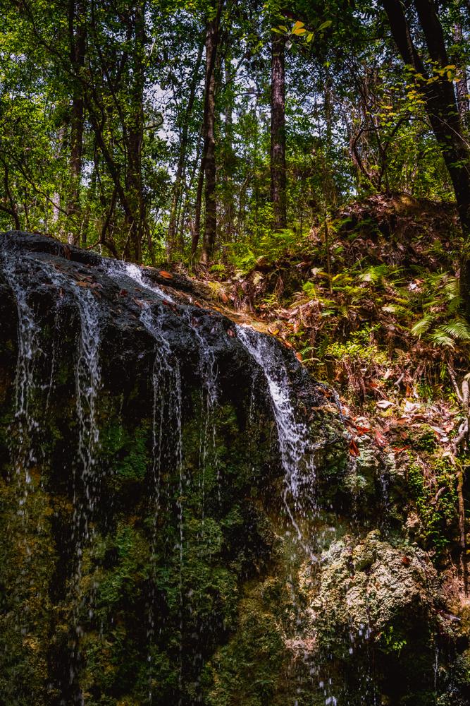 Falling Waters Park-78.jpg