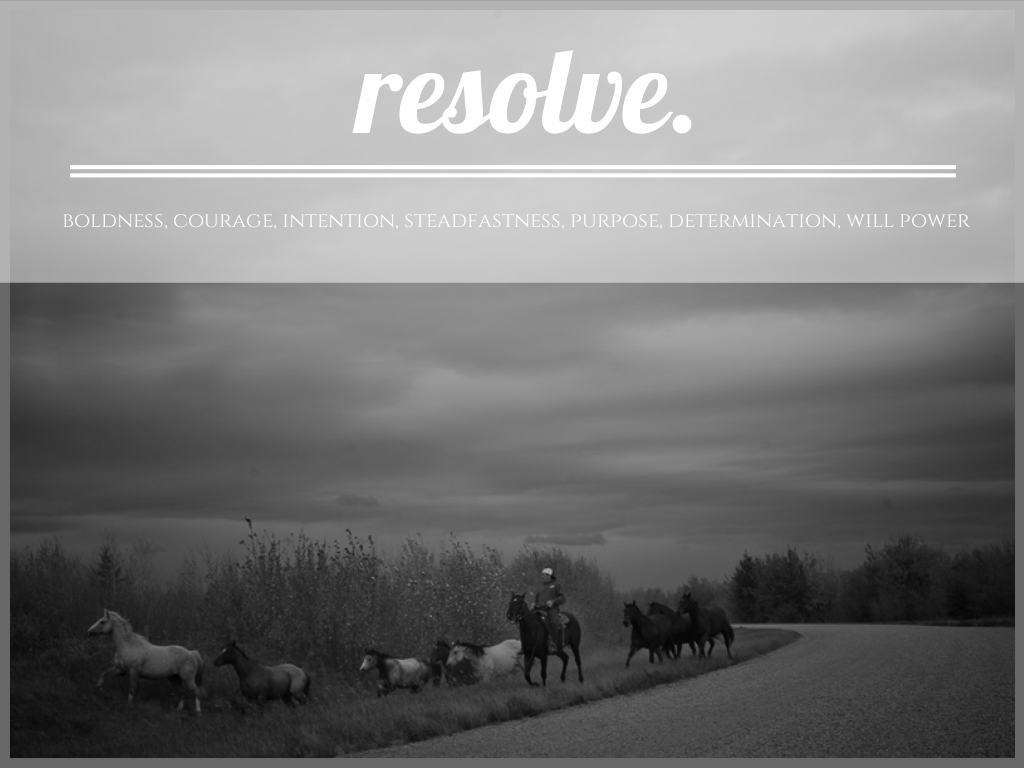 Resolve by Lorraine Marie Fotography