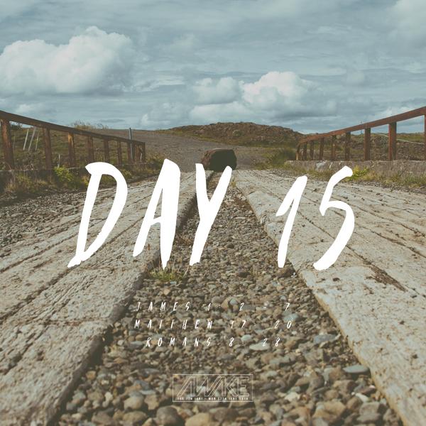 Day Fifteen
