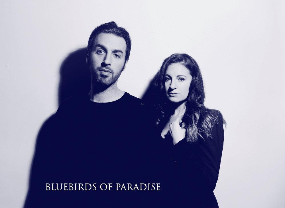 Bluebirds Promo Pic_small.jpg