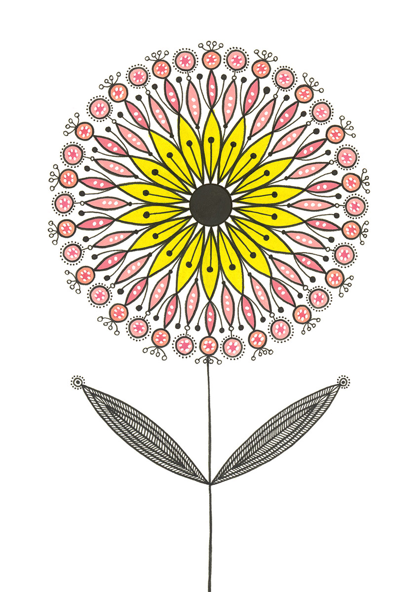 Blumengarten illustration 'Aster Rosa'