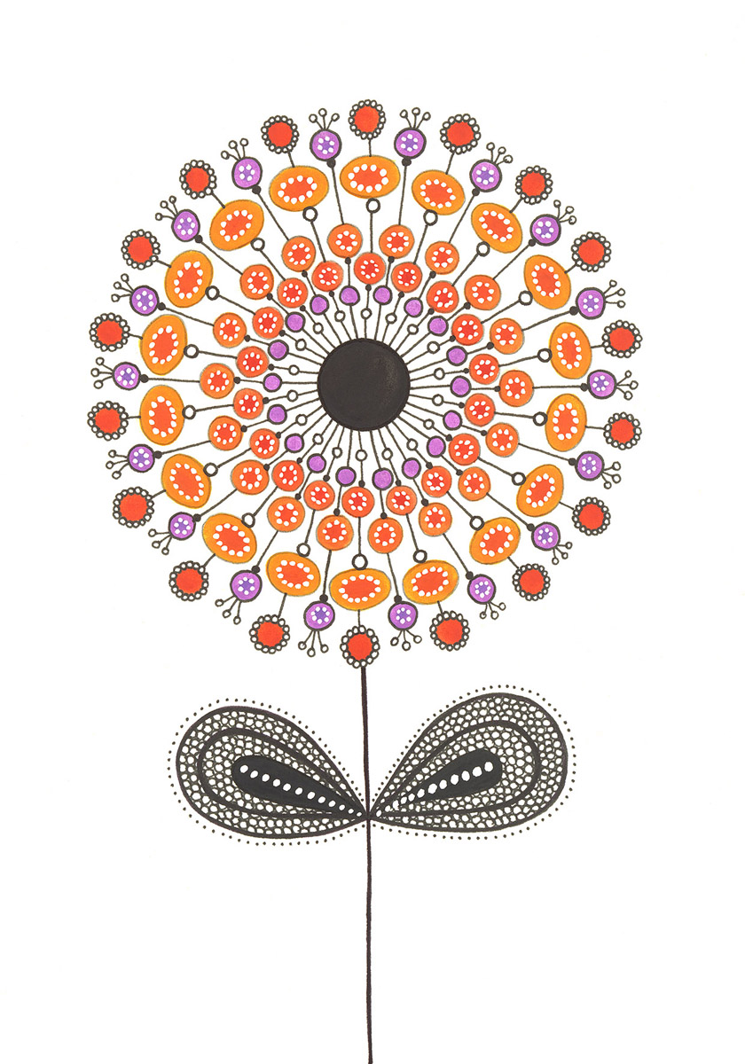 Blumengarten illustration 'Aster Orange'