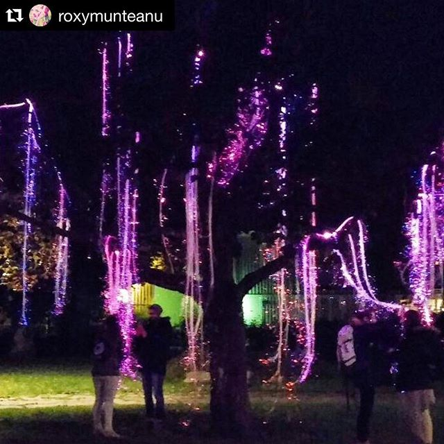 This magic picture of The Tree was posted by @roxymunteanu from Lights in Alingsås.  www.thetr.ee  #nolandtree  #makercamplights ・・・ Magic in Alingsas!!! #magic #magical #sweeden #alingsas #lightinalingsås #light #nature #travel #workshop  #RoxyVintageCollection