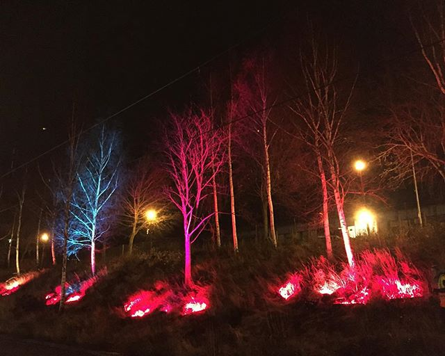 "The Tree is taking part in Julstaden 2015 at Hjällbo in Gothenburg. This particular installation is named ""Tequila sunrise"". Inauguration tomorrow Friday at 17:00."