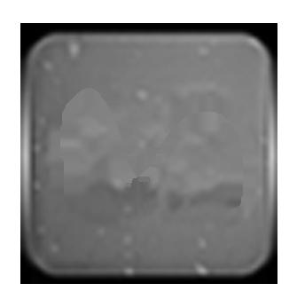 modelmayhem.com