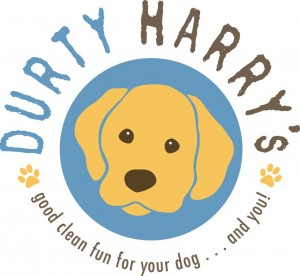 durtyharry1color-300x276.jpg