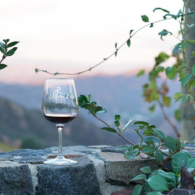 Fill in the blank: I'm thankful for ____. . . . #thanksgiving #wine #winetasting #nature #peace #wellbeing #malibuwinesafari #malibu #california #winewednesday #losangeles #sunnyday #sunsets