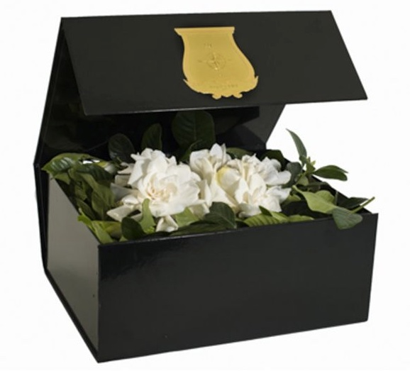 DELUXE VINE & BLOOM BOX