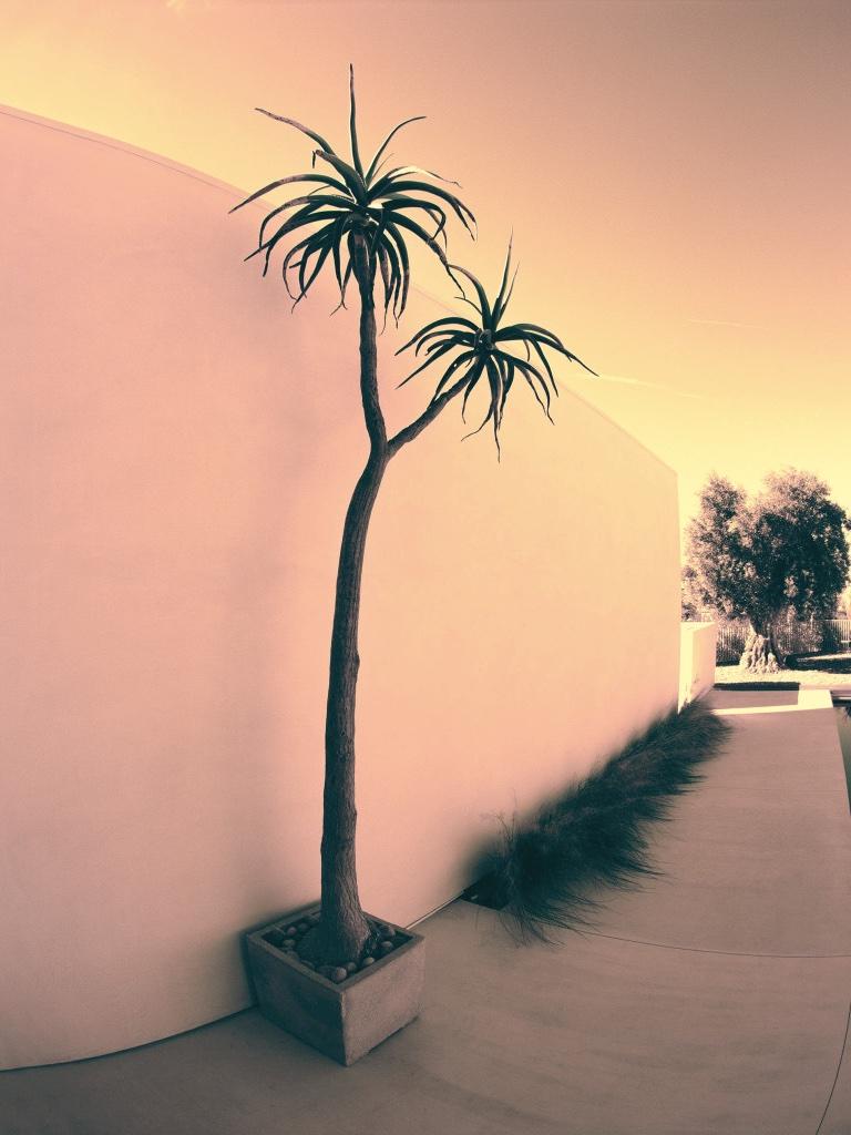 BEACH HOUSE 2 .jpg