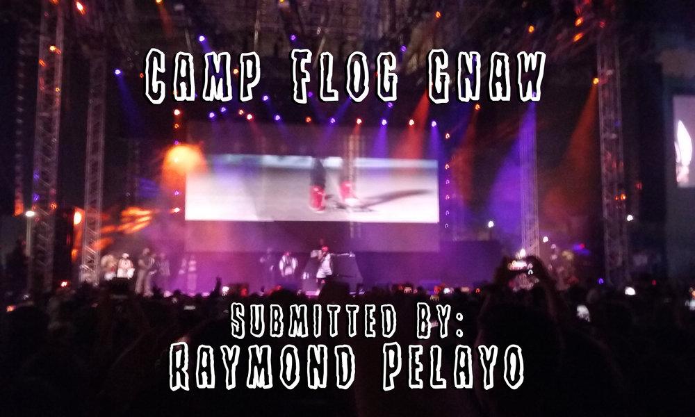Camp FLog Gnaw - Review