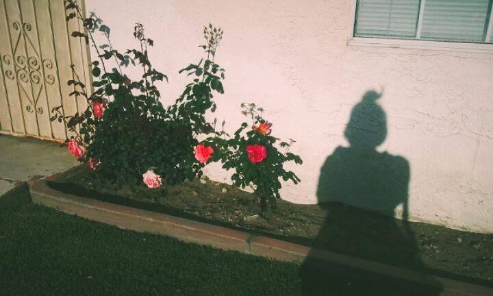 mine_shadow copy.jpg