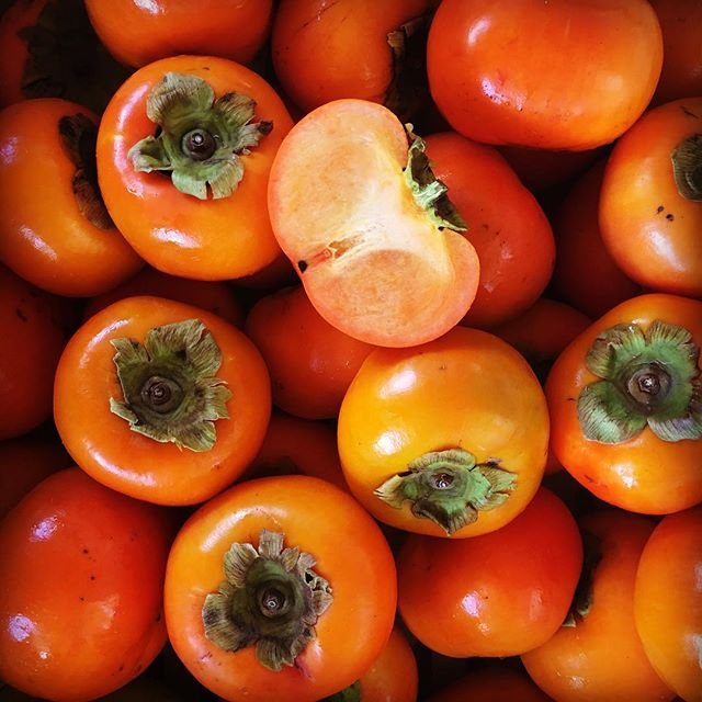 Nature's solution for something crunchy and sweet: Fuyu persimmons! With only 127 calories in 3.5 oz they're a way better option to satisfy your 'crunchy tooth' than chips 🍑Happy Monday! * * * * * #persimmon #thefoodofgods #fuyupersimmon #locallygrownfruit #farmersmarket #maui #alohastate #napilifarmersmarket #hawaii #tropicalfruit #crunchy #cleaneating #vegetariansofig #supportlocal