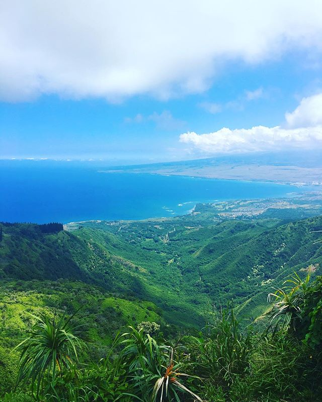 Happy Aloha Friday! The views from the top of Waihee Ridge Trail are breathtaking, aren't they? Have you done this gorgeous hike before? #maui #hawaii #alohafriday #tgif #waiheeridgetrail #waihee #hike #808state #alohastate #pacificocean #jungle #bluestsky