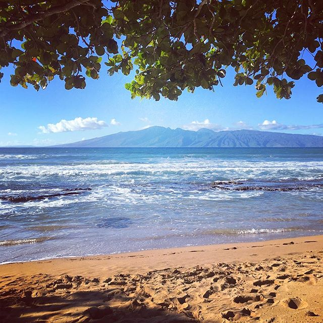 Happy Aloha Friday! The sun and good weather are finally back so we hope you'll get a dose of sunshine over this weekend! ☀️🌈 (You might have to go to Lahaina, though 😌) * * * * * * #napilifarmersmarket #alohafriday #maui #hawaii #tgif #happyweekend #aloha #pacificocean #808state