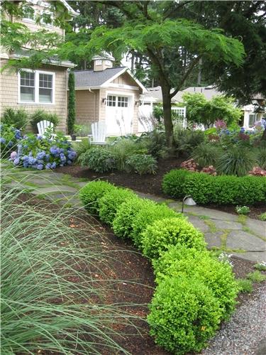 low-evergreen-hedge-spring-greenworks_3995.jpg