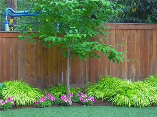 plants-border-spring-greenworks_4111.jpg
