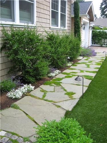 walkway-moss-stone-lights-straight-spring-greenworks_3998.jpg