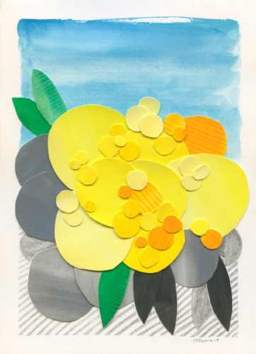 Wattle Wonder , 2013, collage on cotton rag, 18cm x 25cm. SOLD.  Available in limited edition print