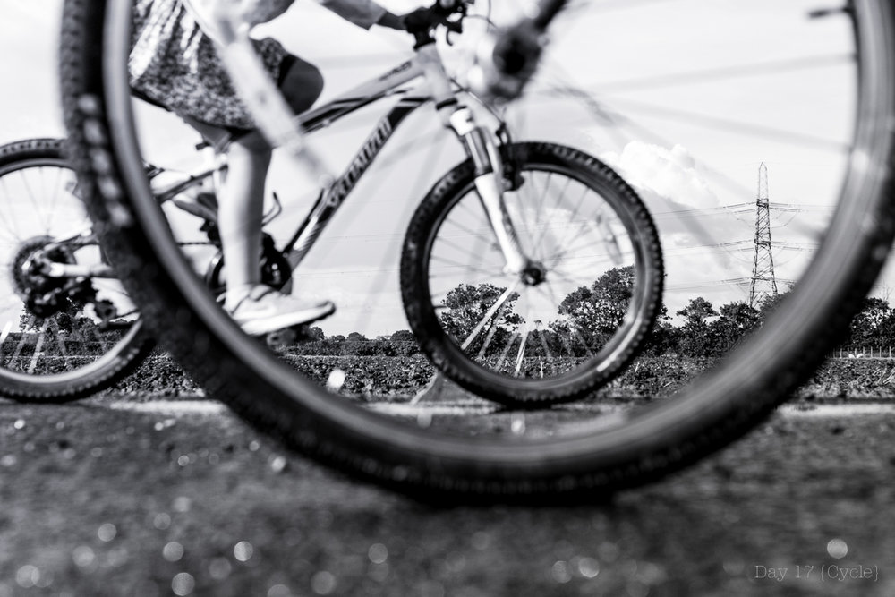cycle-1.jpg