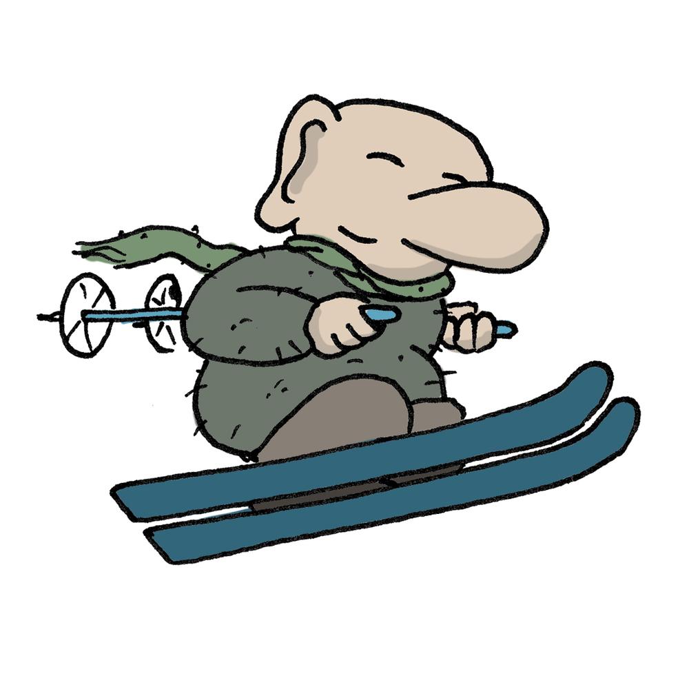 skidor.jpg