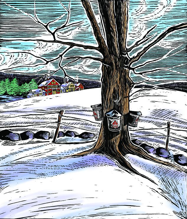 WinterCover2010sm.jpg