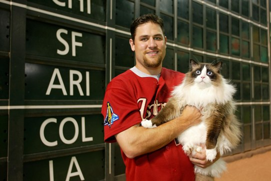 Photo credit: MLBblog