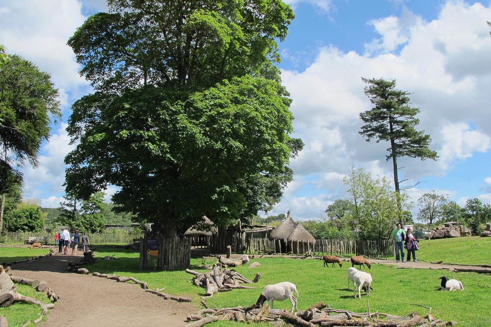 African Village.jpg