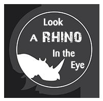 Look A Rhino In the Eye