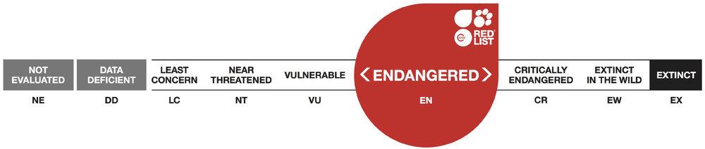 UCN Endangered.jpg