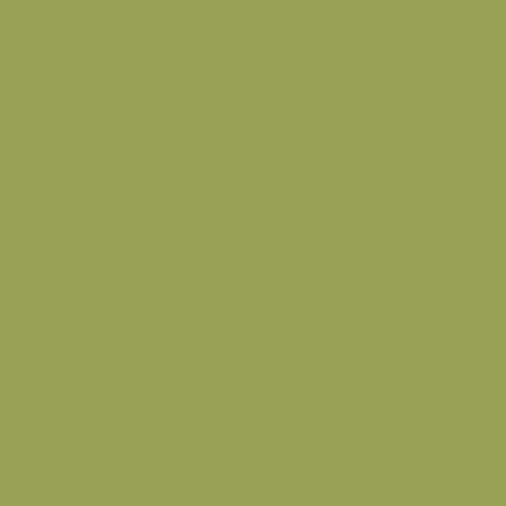 V1263/1264 Pure Green