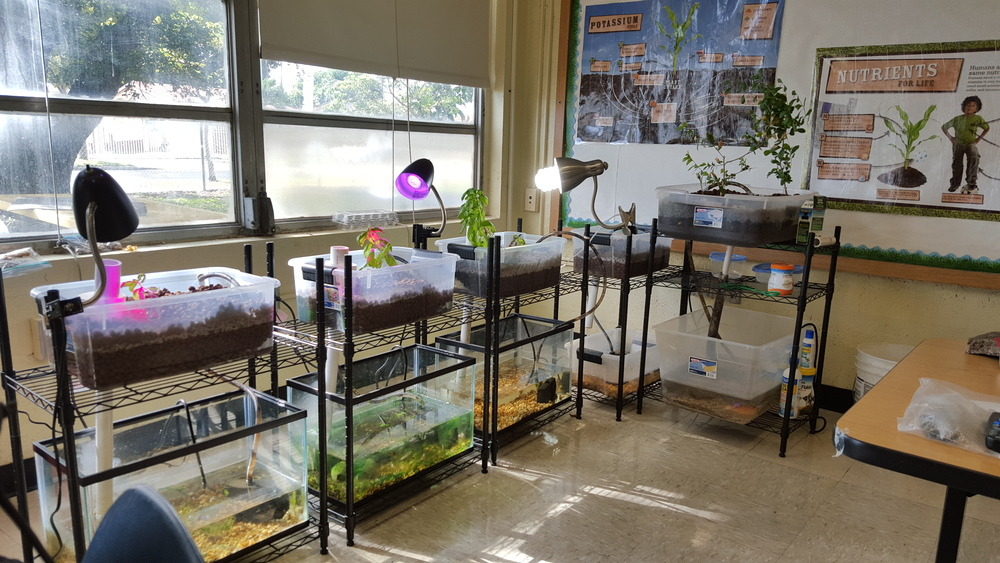 Aquaponics_Hialeah_Classroom.jpg