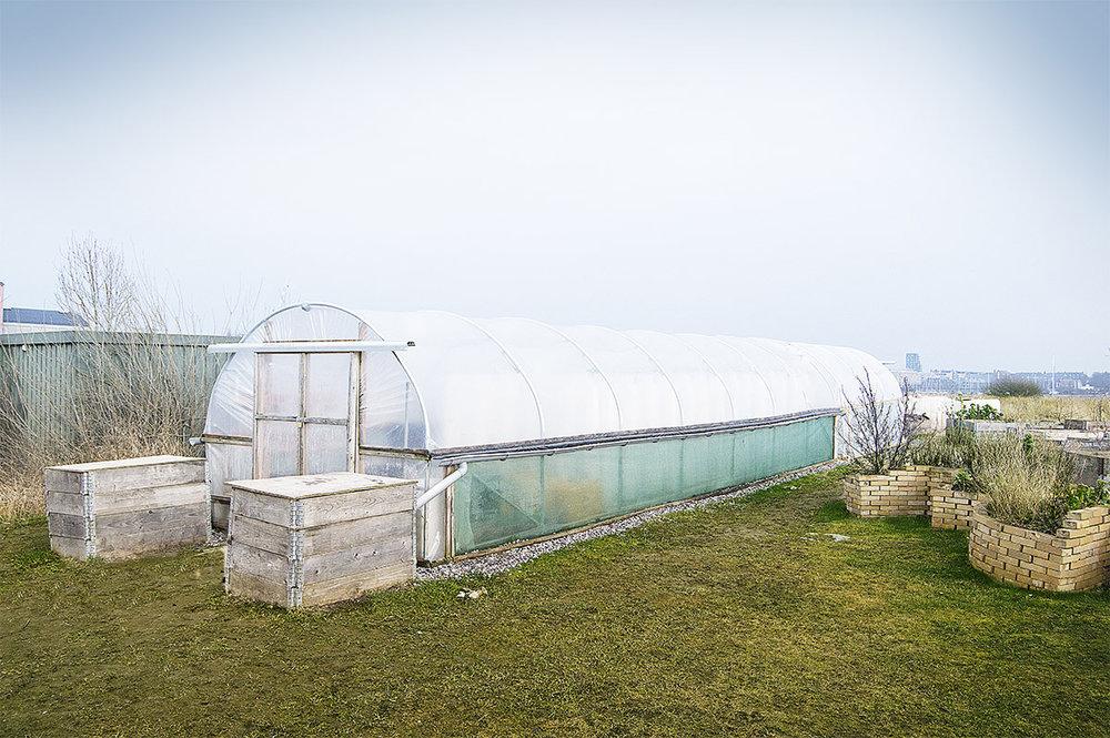 Polytunnel - En polytunnel fungerer som et drivhus, men er produceret i et lettere materiale. En polytunnel er hurtig at stille op og kan efterfølgende flyttes, hvis man ønsker det. Ligesom med andre væksthuse, gør en polytunnel det muligt at forlænge vækstsæsonen for dyrkning af frugt og grøntsager, der kræver varmere klima end det danske. Kombineret med en varmeovn, kan en polytunnel bruges hele året.Foto:BIOARK har opført en polytunnel hos restaurant Amass i København, som sikrer køkkenet friske krydderurter, tomater og salater året rundt.