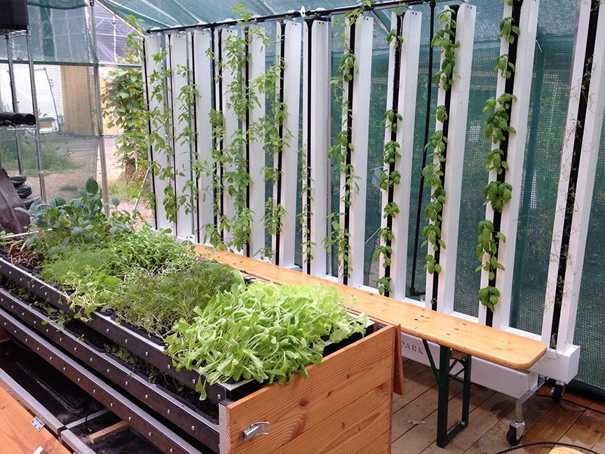 BIOARK - væksthus / drivhus -bylandbrug / Urban Farming ved Energicenter Voldparken