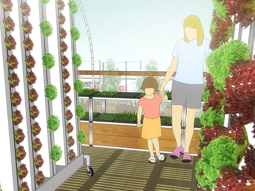 BIOARK - polytunnel, Fragtmandshallen Vesterbro - Taglandbrug / bylandbrug / Urban Farming