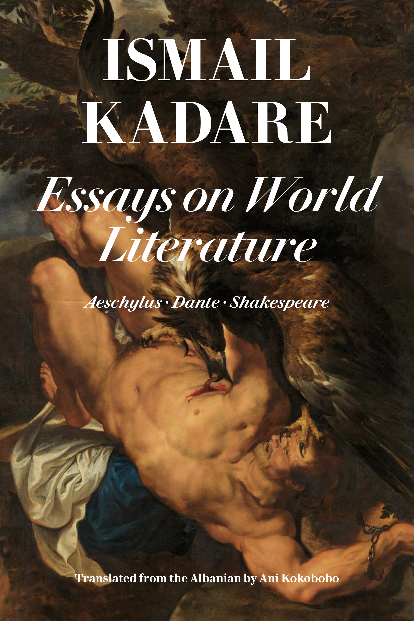 essays on world literature shakespeare  aeschylus  dante  restless books