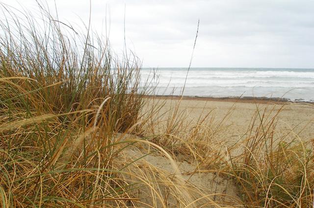 beaches-04.jpg