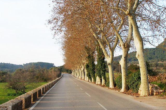 Roads-01.jpg