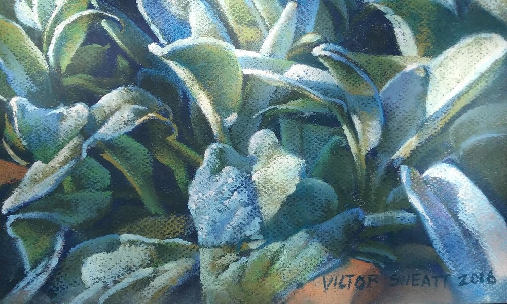"""Morning Dew"" by Victor Sweatt, 9x12in, pastel on canson paper (2016), $550 