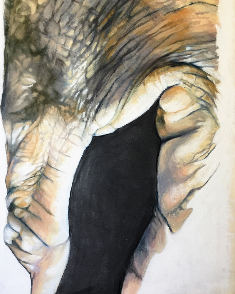 """Cavea"" by Jenny Shircliff, 18x15in, pastels on paper (2016), $650 