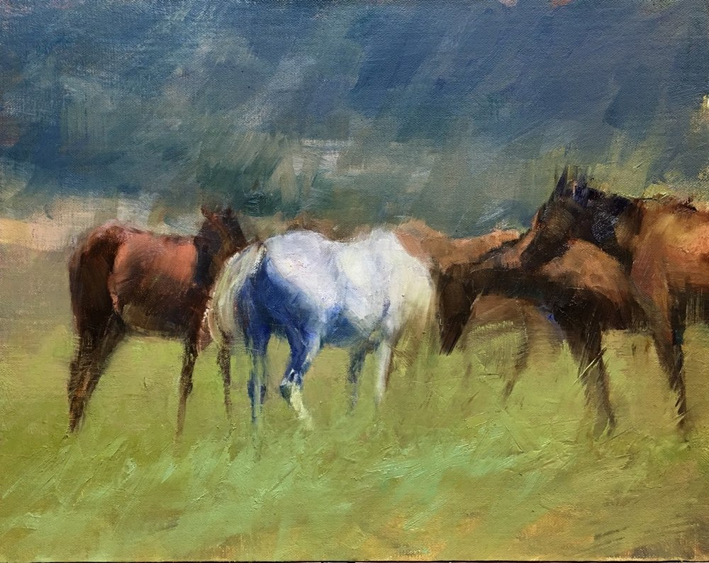 """Southern Horses"" by Valtcho Tonov, 11x14 in, oil on linen panel (2016), $600 (comes in gold frame) 